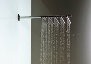 Vola Shower Head